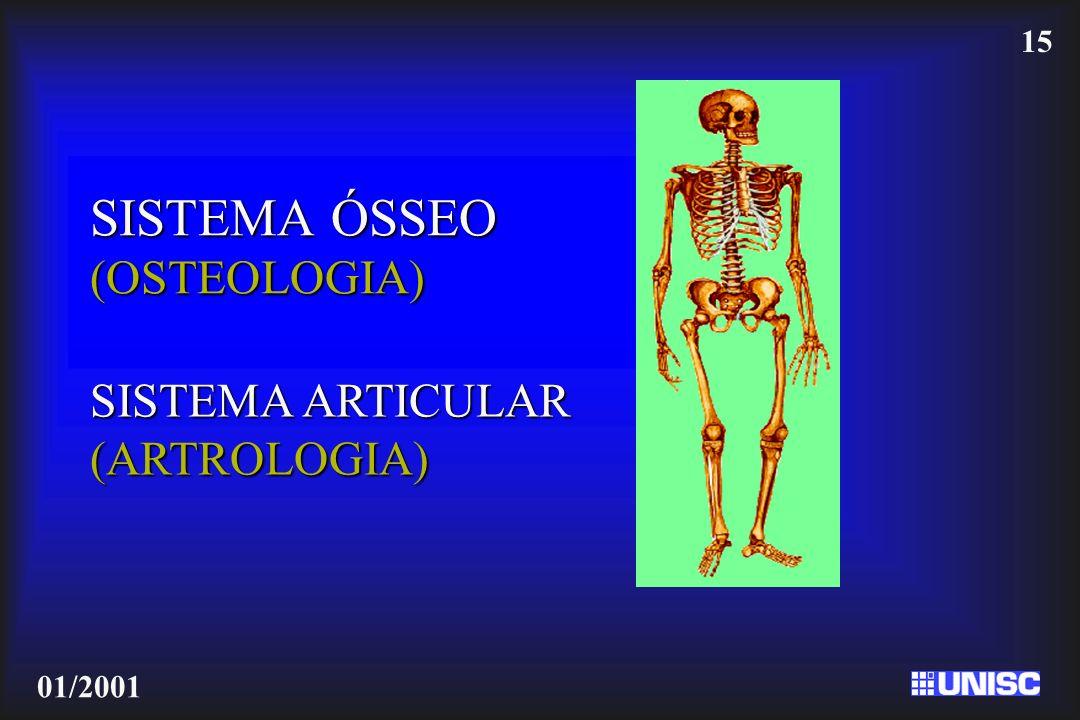 15 01/2001 SISTEMA ÓSSEO (OSTEOLOGIA) SISTEMA ARTICULAR (ARTROLOGIA)
