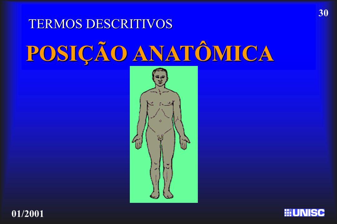 30 01/2001 TERMOS DESCRITIVOS POSIÇÃO ANATÔMICA
