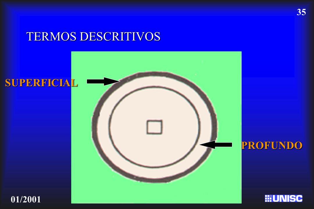 35 01/2001 TERMOS DESCRITIVOS SUPERFICIAL PROFUNDO