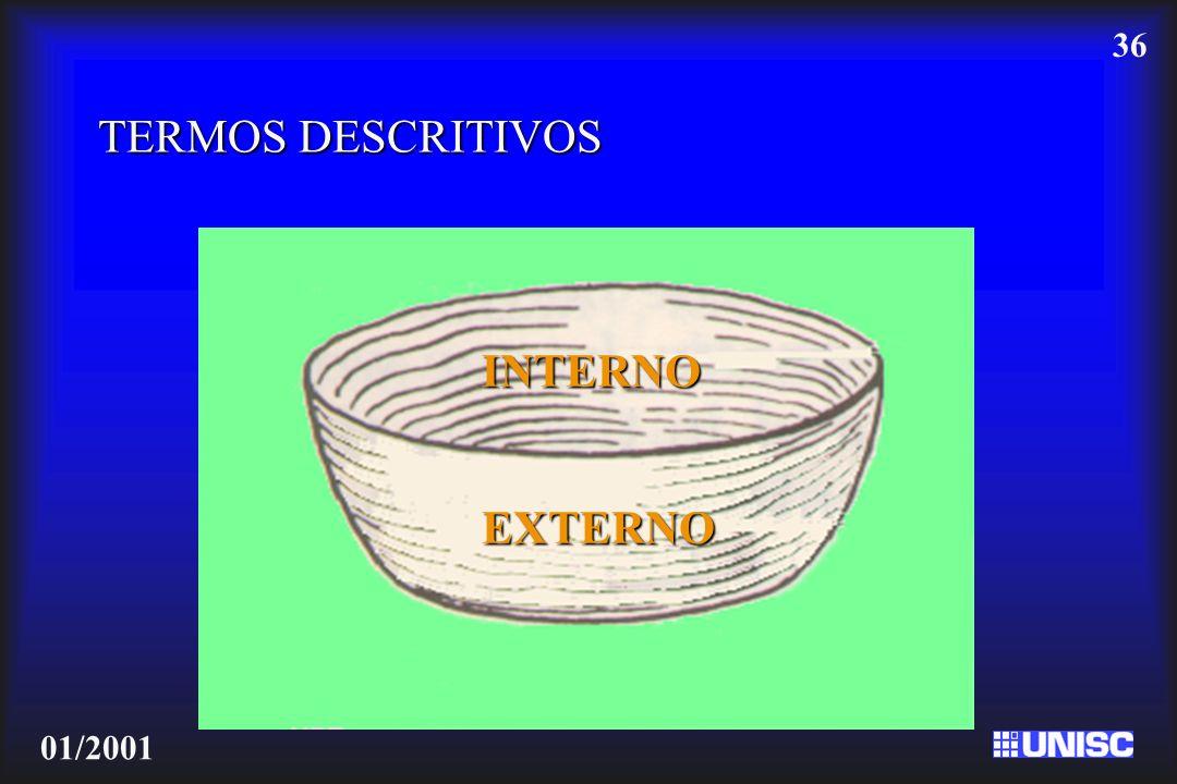 36 01/2001 TERMOS DESCRITIVOS INTERNO EXTERNO