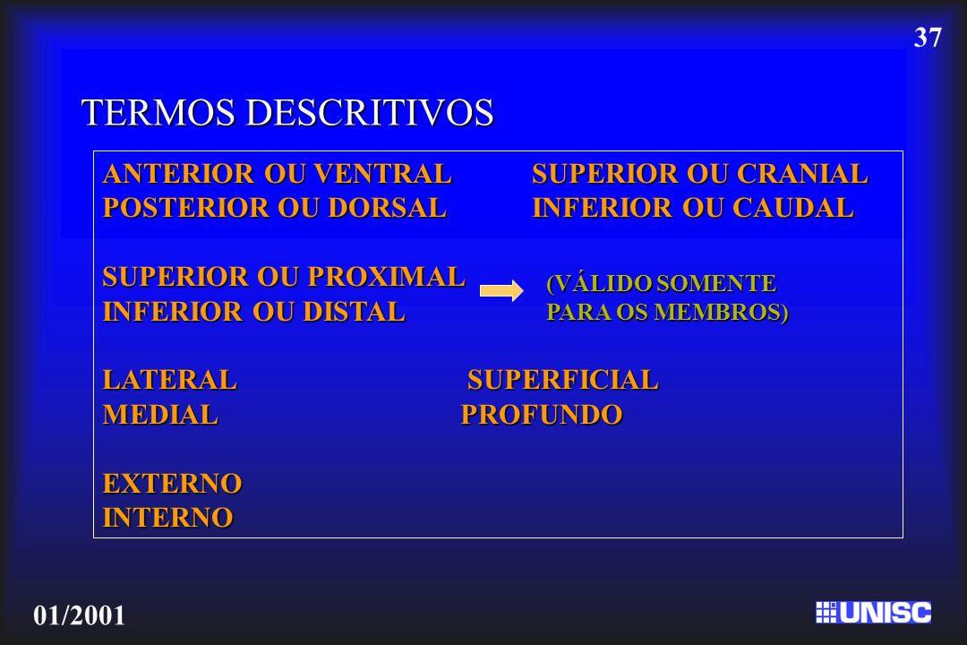 37 01/2001 TERMOS DESCRITIVOS ANTERIOR OU VENTRALSUPERIOR OU CRANIAL POSTERIOR OU DORSALINFERIOR OU CAUDAL SUPERIOR OU PROXIMAL INFERIOR OU DISTAL LAT