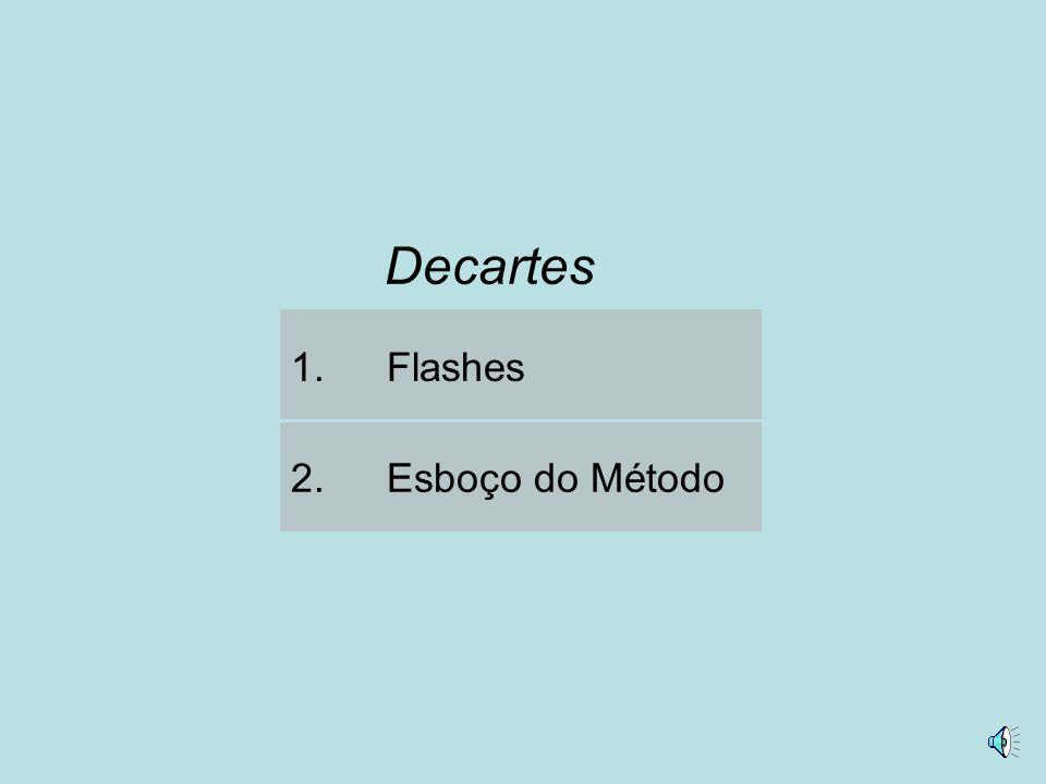 2.Esboço do Método 1.Flashes Decartes