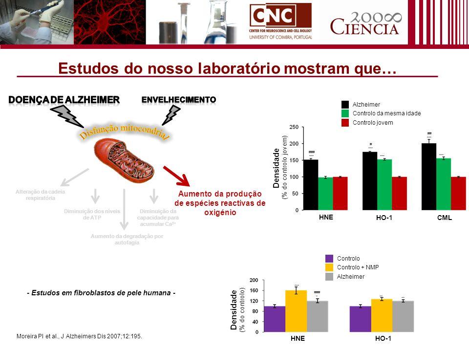 Alteração da cadeia respiratória Aumento da produção de espécies reactivas de oxigénio Aumento da degradação por autofagia Diminuição dos níveis de AT