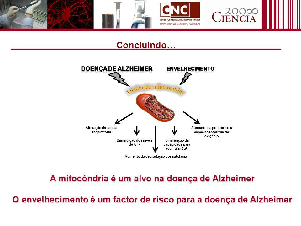 Concluindo… A mitocôndria é um alvo na doença de Alzheimer O envelhecimento é um factor de risco para a doença de Alzheimer Alteração da cadeia respir
