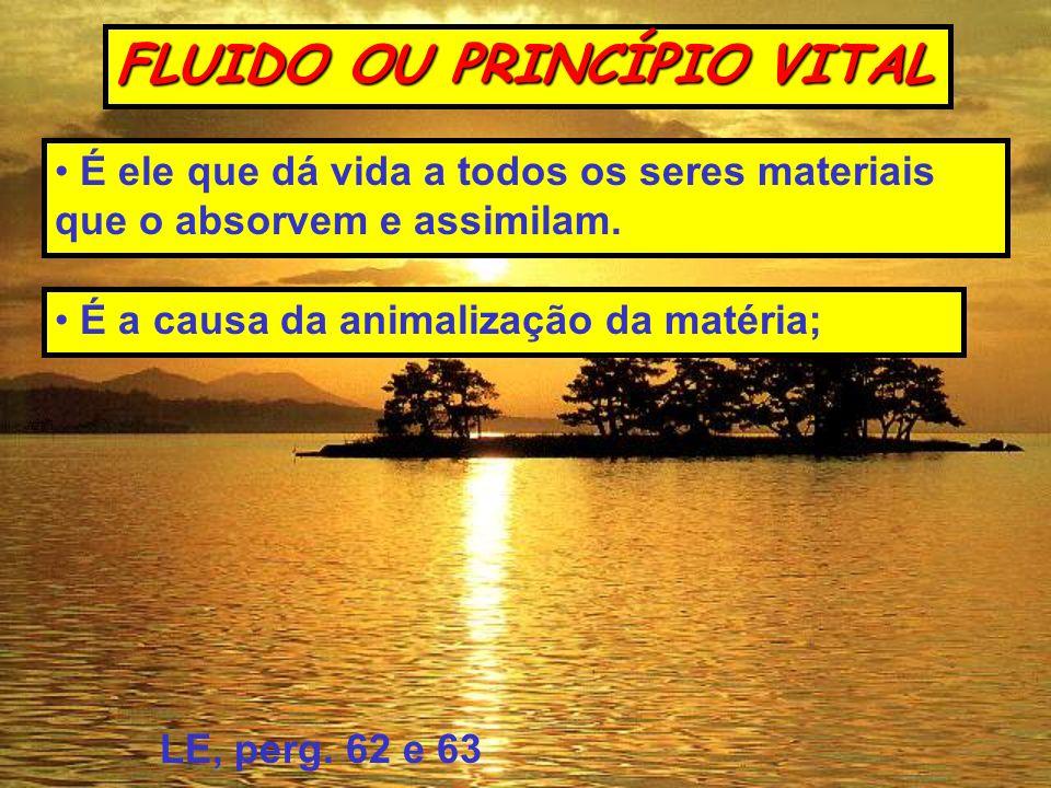 FLUIDO OU PRINCÍPIO VITAL É a causa da animalização da matéria; É ele que dá vida a todos os seres materiais que o absorvem e assimilam. LE, perg. 62
