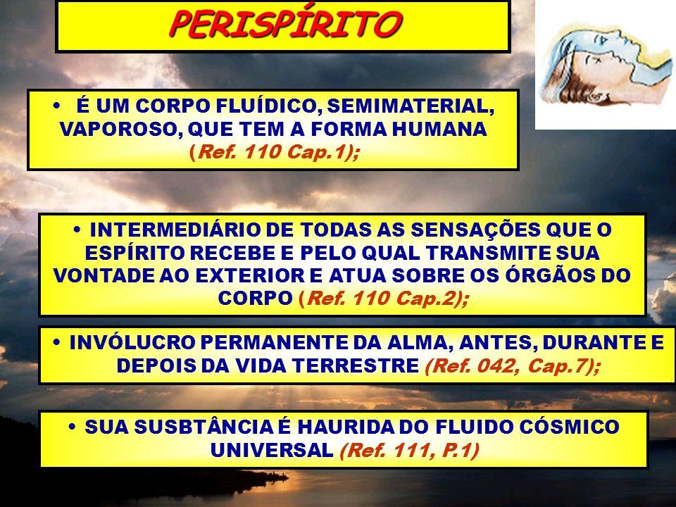 É UM CORPO FLUÍDICO, SEMIMATERIAL, VAPOROSO, QUE TEM A FORMA HUMANA (Ref. 110 Cap.1); PERISPÍRITO INTERMEDIÁRIO DE TODAS AS SENSAÇÕES QUE O ESPÍRITO R