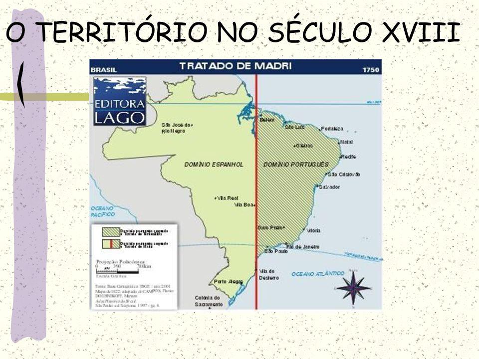 SIVAM – SISTEMA DE VIGILÂNCIA DA AMAZÕNIA É uma rede de coleta e processamento de informações.