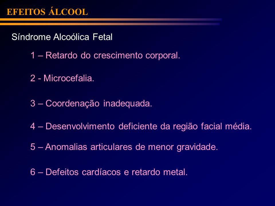 EFEITOS ÁLCOOL Síndrome Alcoólica Fetal 1 – Retardo do crescimento corporal. 2 - Microcefalia. 3 – Coordenação inadequada. 4 – Desenvolvimento deficie