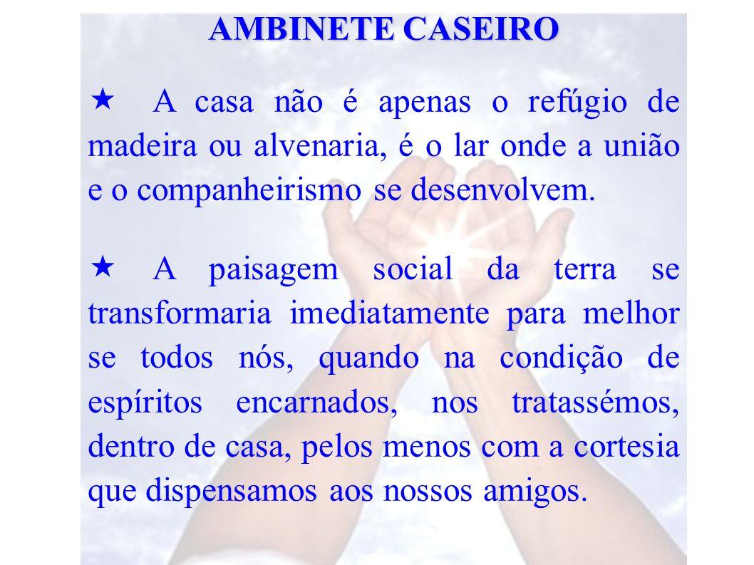 AMBINETE CASEIRO A casa não é apenas o refúgio de madeira ou alvenaria, é o lar onde a união e o companheirismo se desenvolvem.