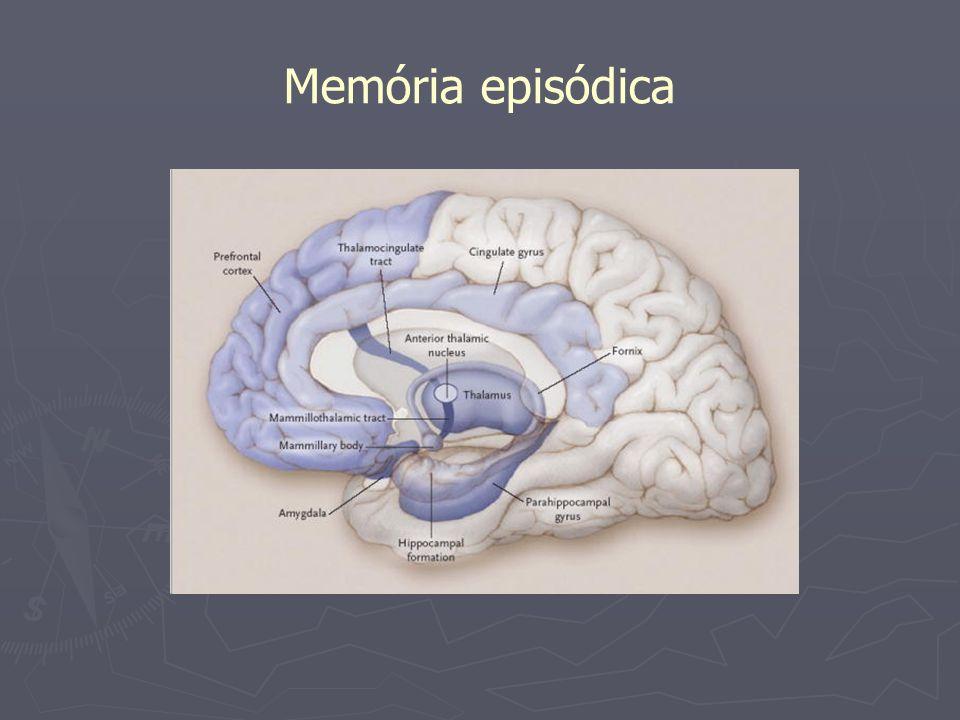 Memória semântica Armazenamento de conhecimento factual e conceitual.