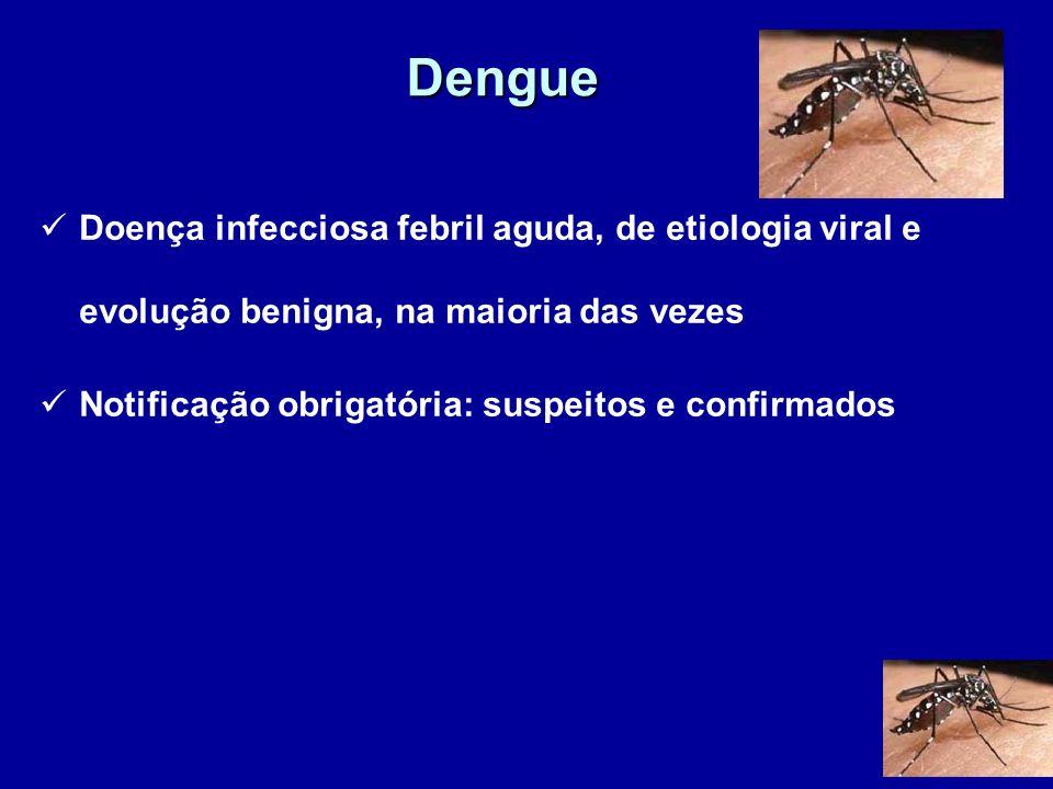 Dengue Doença infecciosa febril aguda, de etiologia viral e evolução benigna, na maioria das vezes Notificação obrigatória: suspeitos e confirmados