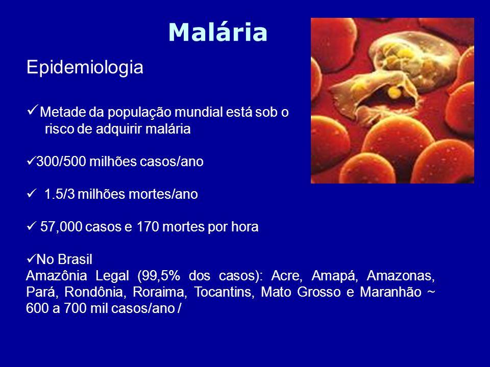 Epidemiologia Metade da população mundial está sob o risco de adquirir malária 300/500 milhões casos/ano 1.5/3 milhões mortes/ano 57,000 casos e 170 m
