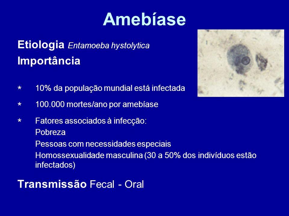 Amebíase Etiologia Entamoeba hystolytica Importância Transmissão Fecal - Oral * 10% da população mundial está infectada * 100.000 mortes/ano por amebí