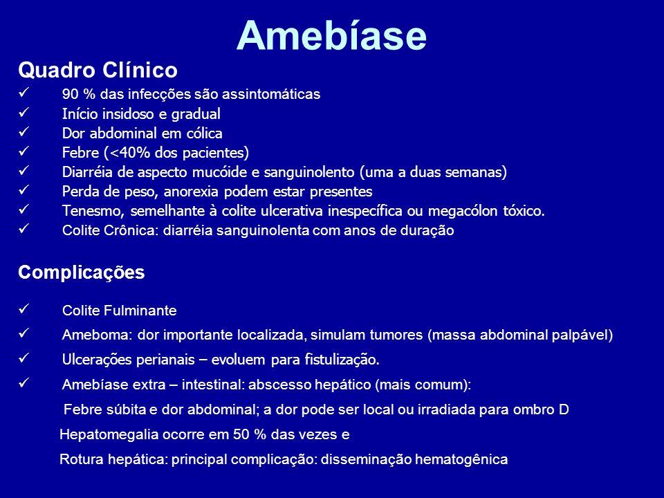 Amebíase Quadro Clínico 90 % das infecções são assintomáticas Início insidoso e gradual Dor abdominal em cólica Febre (<40% dos pacientes) Diarréia de