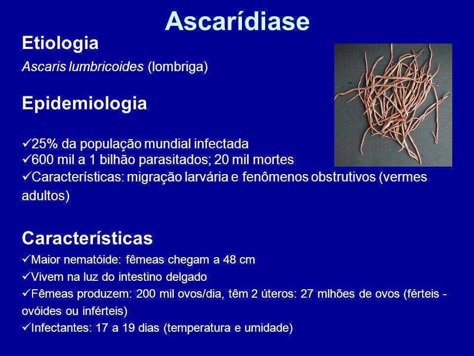 Ascarídiase Etiologia Ascaris lumbricoides (lombriga) Epidemiologia 25% da população mundial infectada 600 mil a 1 bilhão parasitados; 20 mil mortes C