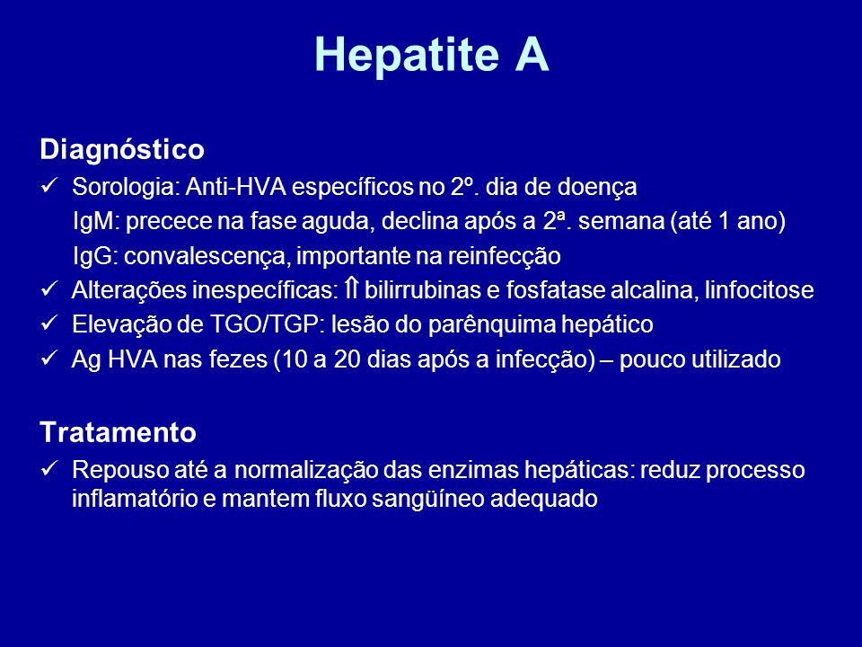 Hepatite A Diagnóstico Sorologia: Anti-HVA específicos no 2º. dia de doença IgM: precece na fase aguda, declina após a 2ª. semana (até 1 ano) IgG: con