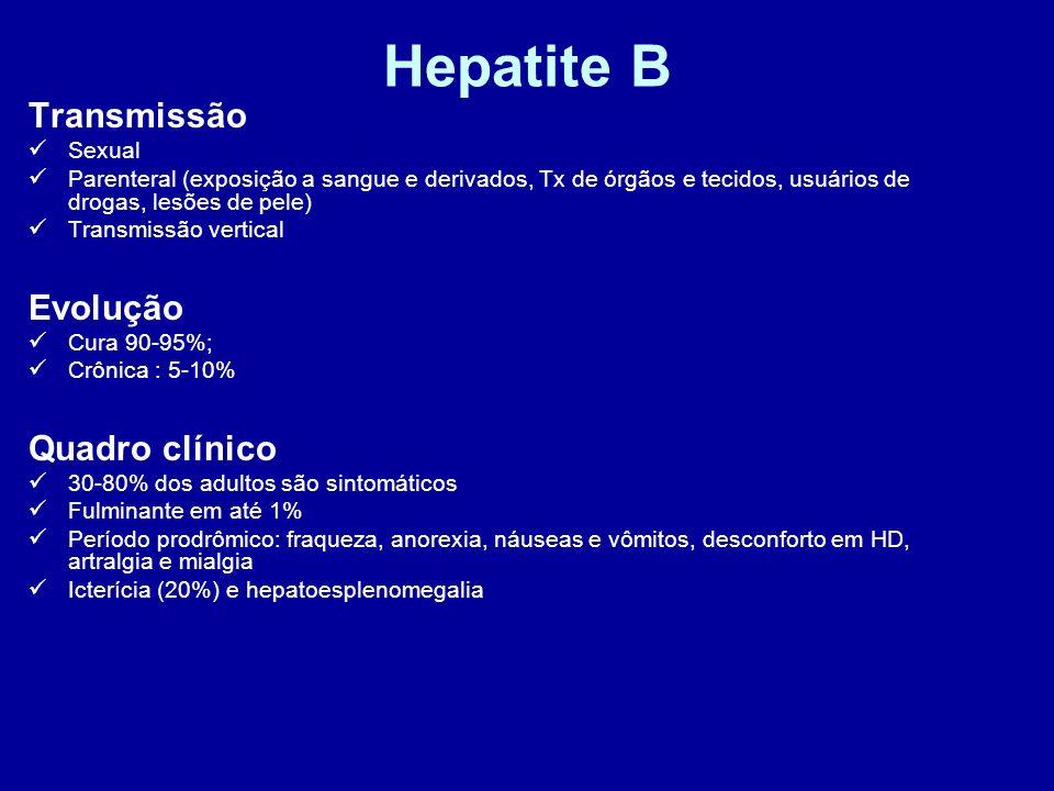 Hepatite B Transmissão Sexual Parenteral (exposição a sangue e derivados, Tx de órgãos e tecidos, usuários de drogas, lesões de pele) Transmissão vert