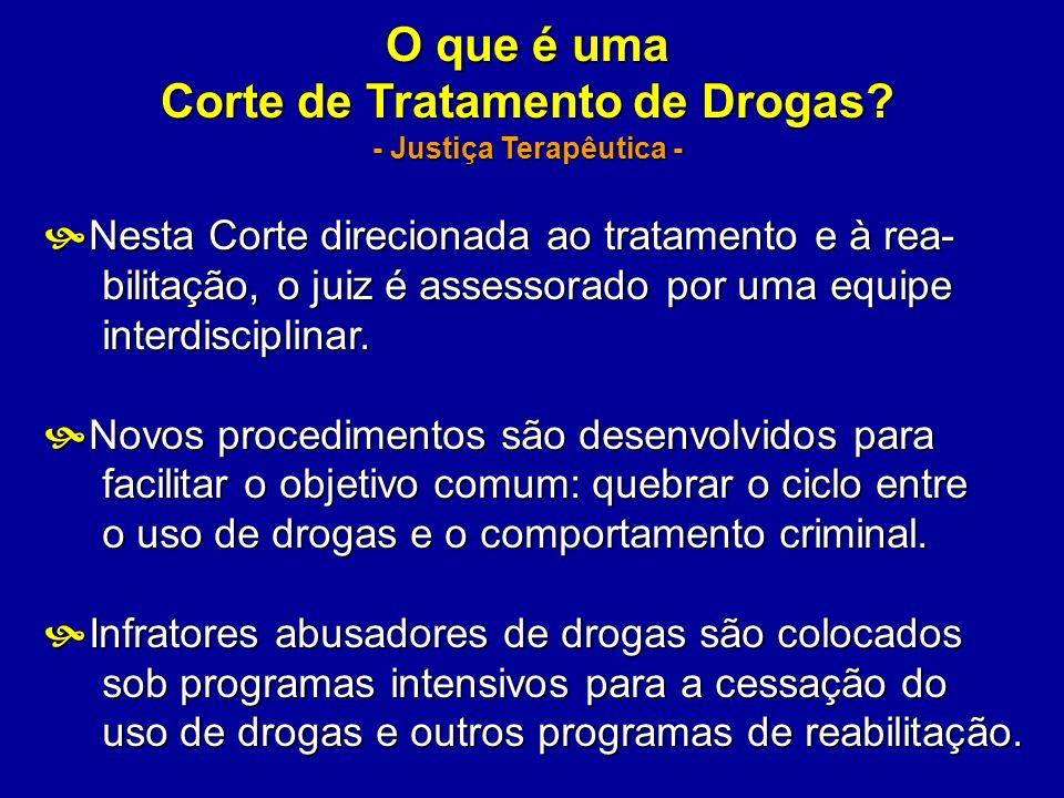 O que é uma Corte de Tratamento de Drogas? - Justiça Terapêutica - Nesta Corte direcionada ao tratamento e à rea- Nesta Corte direcionada ao tratament