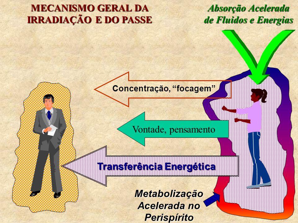Metabolização Acelerada no Perispírito Transferência Energética Concentração, focagem Vontade, pensamento Absorção Acelerada de Fluidos e Energias MEC