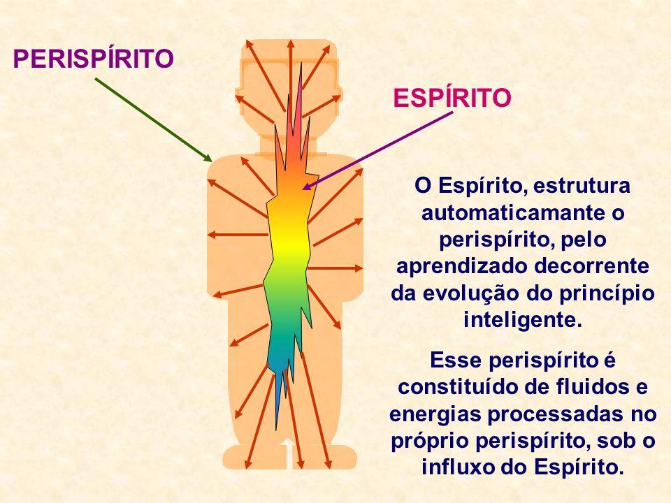 ESPÍRITO PERISPÍRITO O Espírito, estrutura automaticamante o perispírito, pelo aprendizado decorrente da evolução do princípio inteligente. Esse peris