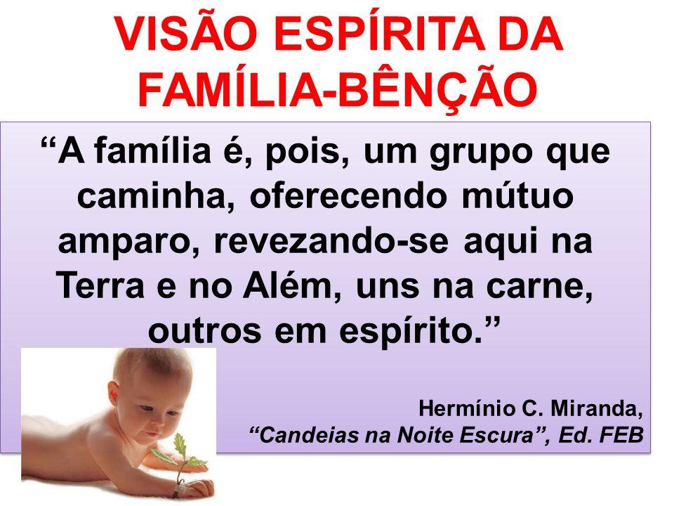 VISÃO ESPÍRITA DA FAMÍLIA-BÊNÇÃO A família é, pois, um grupo que caminha, oferecendo mútuo amparo, revezando-se aqui na Terra e no Além, uns na carne,