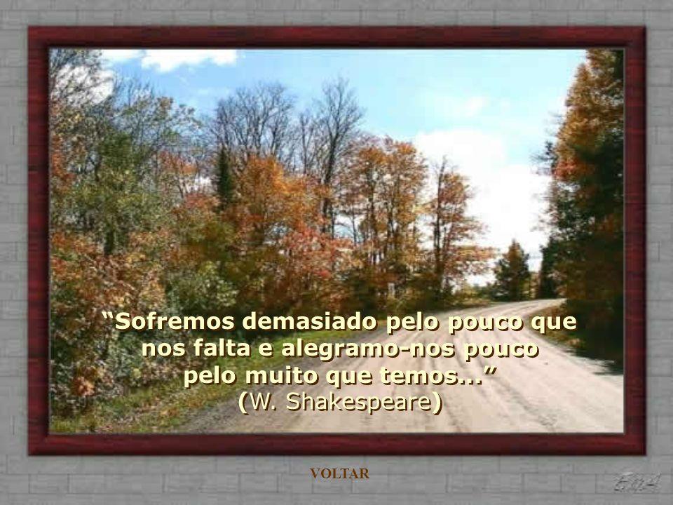 Sofremos demasiado pelo pouco que nos falta e alegramo-nos pouco pelo muito que temos...