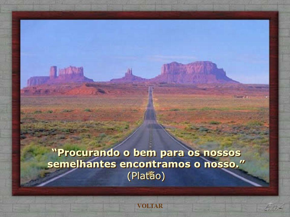 A felicidade não é uma estação de chegada, mas um modo de viajar. (M. Ruberck) VOLTAR