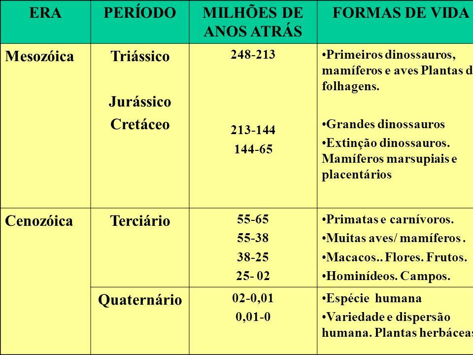 ERAPERÍODOMILHÕES DE ANOS ATRÁS FORMAS DE VIDA MesozóicaTriássico Jurássico Cretáceo 248-213 213-144 144-65 Primeiros dinossauros, mamíferos e aves Pl