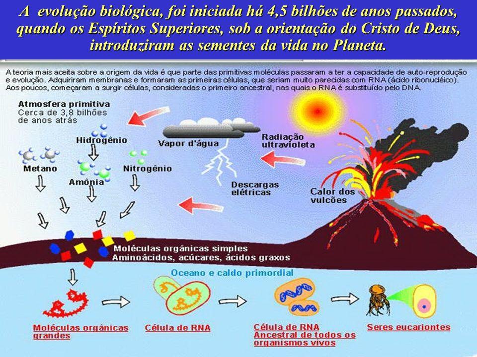 A evolução biológica, foi iniciada há 4,5 bilhões de anos passados, quando os Espíritos Superiores, sob a orientação do Cristo de Deus, introduziram a