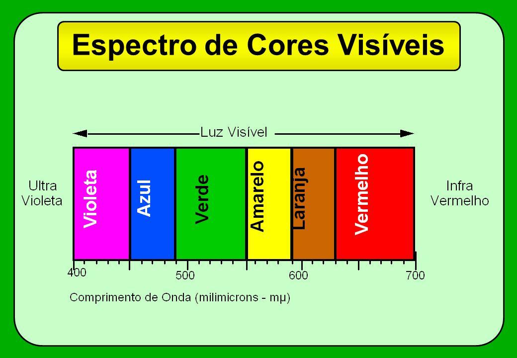 Sensibilidade das Cores 400700440500570590610