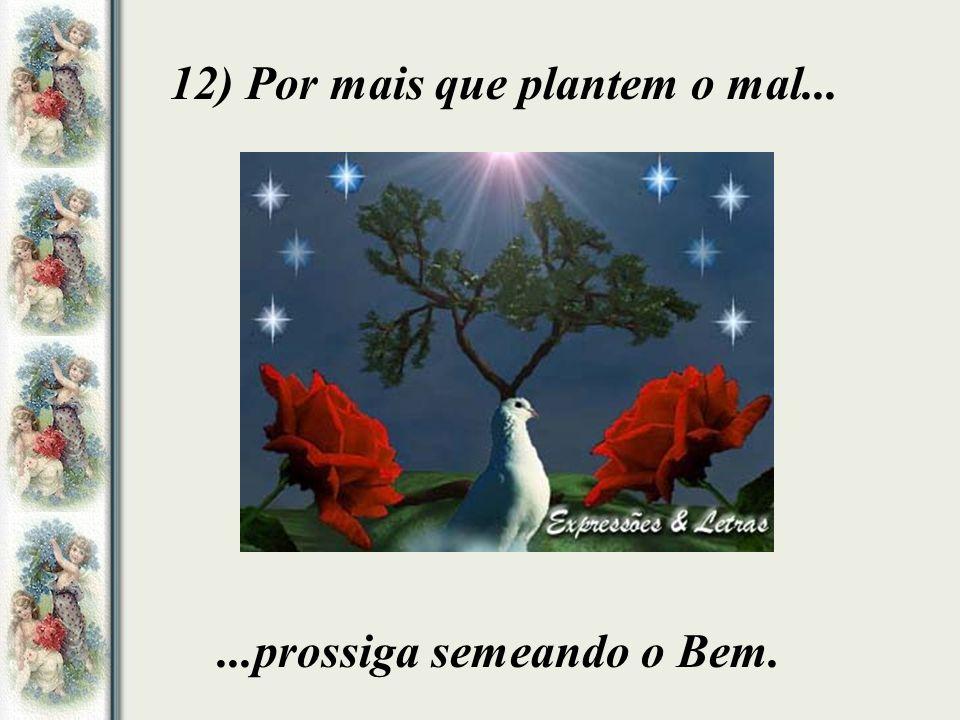 12) Por mais que plantem o mal......prossiga semeando o Bem.