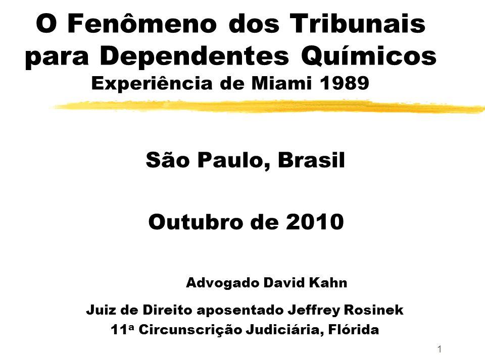 1 O Fenômeno dos Tribunais para Dependentes Químicos Experiência de Miami 1989 São Paulo, Brasil Outubro de 2010 Advogado David Kahn Juiz de Direito aposentado Jeffrey Rosinek 11 a Circunscrição Judiciária, Flórida