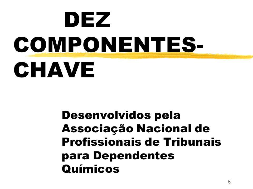5 DEZ COMPONENTES- CHAVE Desenvolvidos pela Associação Nacional de Profissionais de Tribunais para Dependentes Químicos
