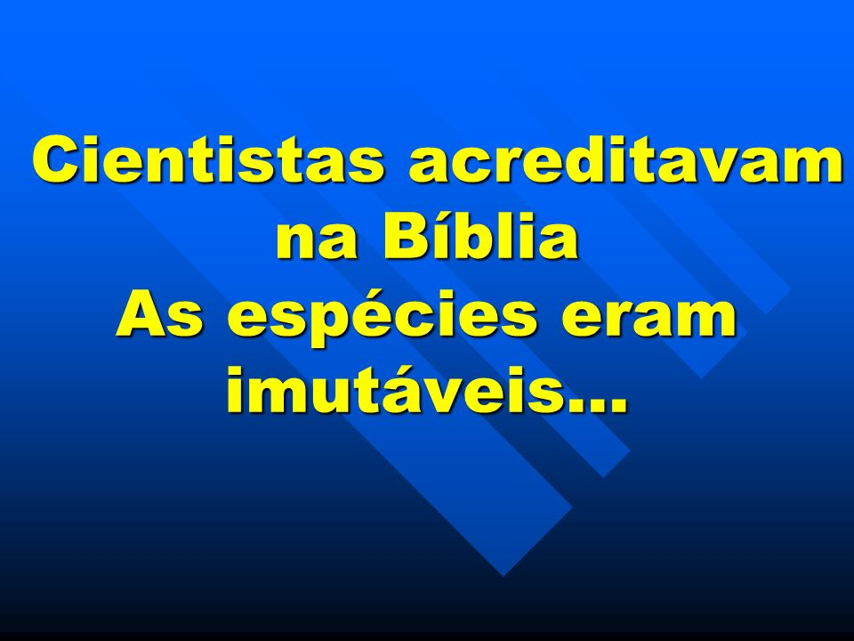 Cientistas acreditavam na Bíblia As espécies eram imutáveis… Cientistas acreditavam na Bíblia As espécies eram imutáveis…