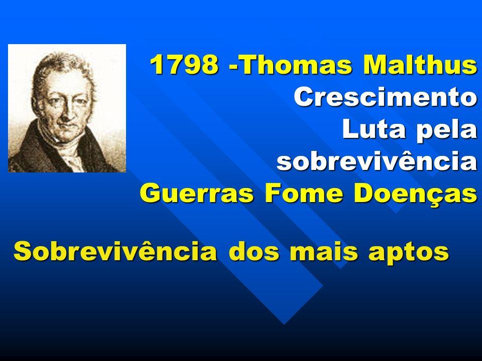 1798 -Thomas Malthus Crescimento Luta pela sobrevivência Guerras Fome Doenças Sobrevivência dos mais aptos