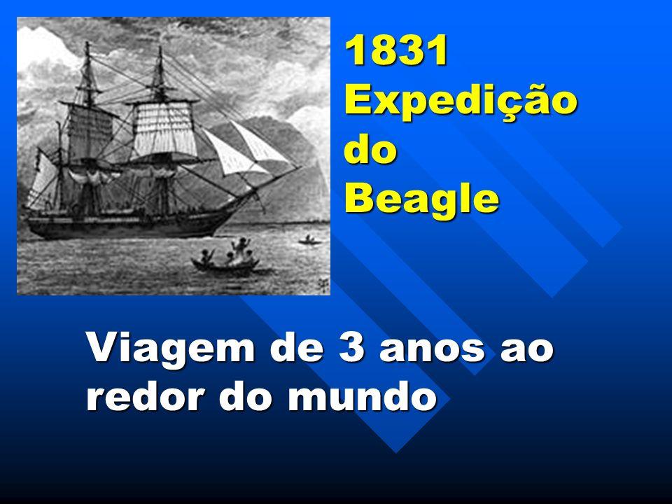 1831ExpediçãodoBeagle Viagem de 3 anos ao redor do mundo