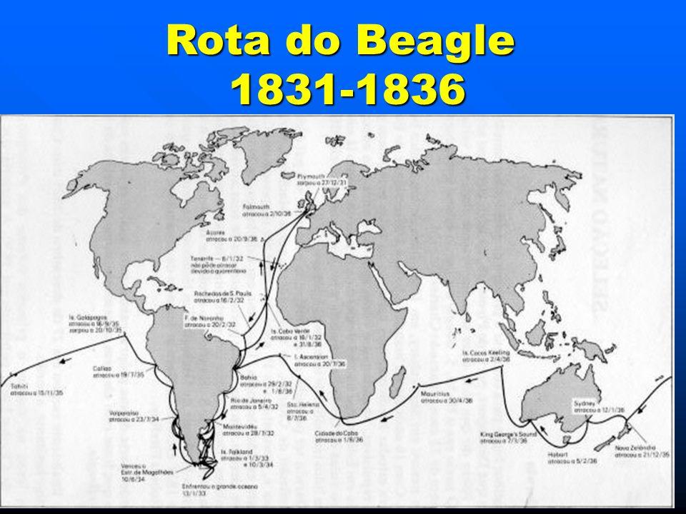 Rota do Beagle 1831-1836 1831-1836