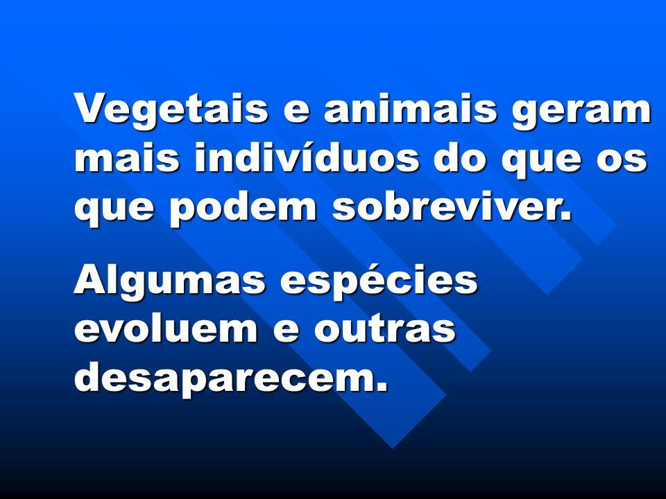 Vegetais e animais geram mais indivíduos do que os que podem sobreviver. Algumas espécies evoluem e outras desaparecem.