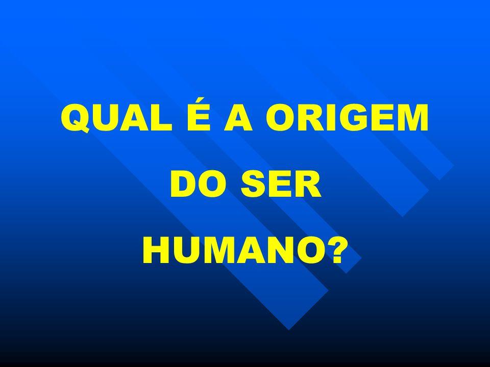 QUAL É A ORIGEM DO SER HUMANO?