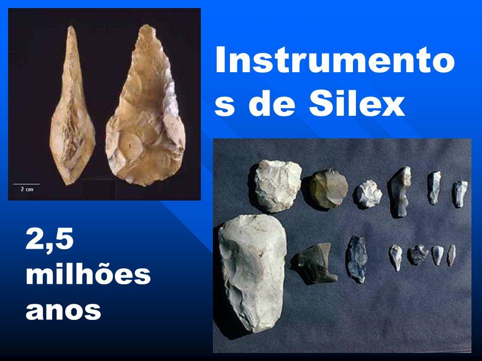 Instrumento s de Silex 2,5 milhões anos
