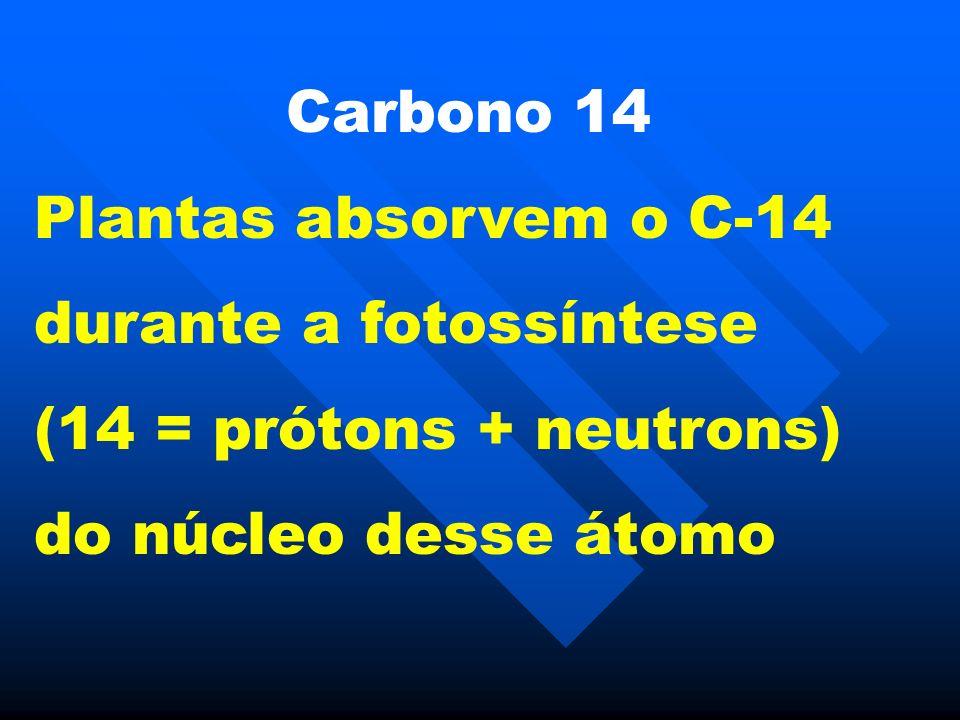 Carbono 14 Plantas absorvem o C-14 durante a fotossíntese (14 = prótons + neutrons) do núcleo desse átomo