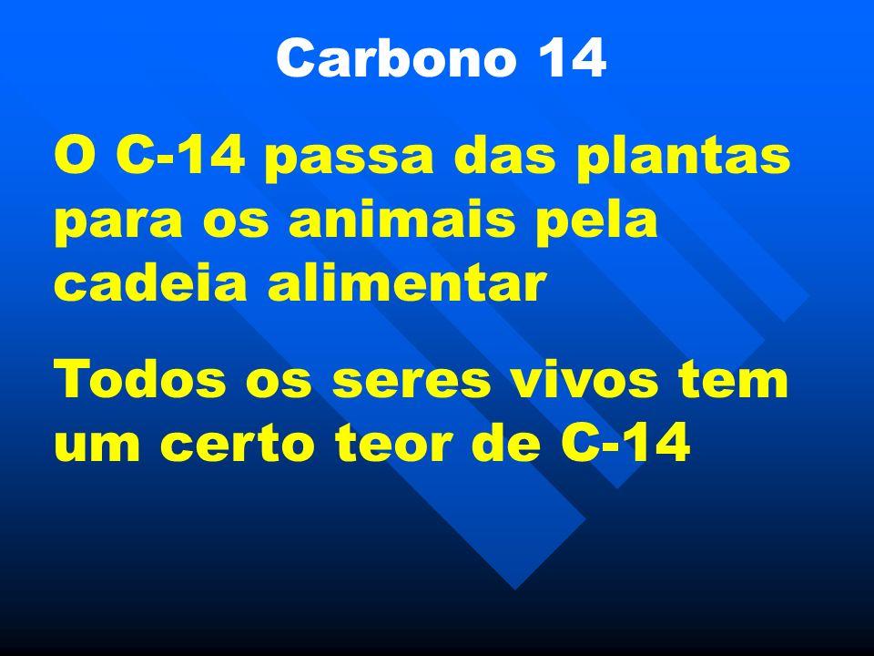 Carbono 14 O C-14 passa das plantas para os animais pela cadeia alimentar Todos os seres vivos tem um certo teor de C-14