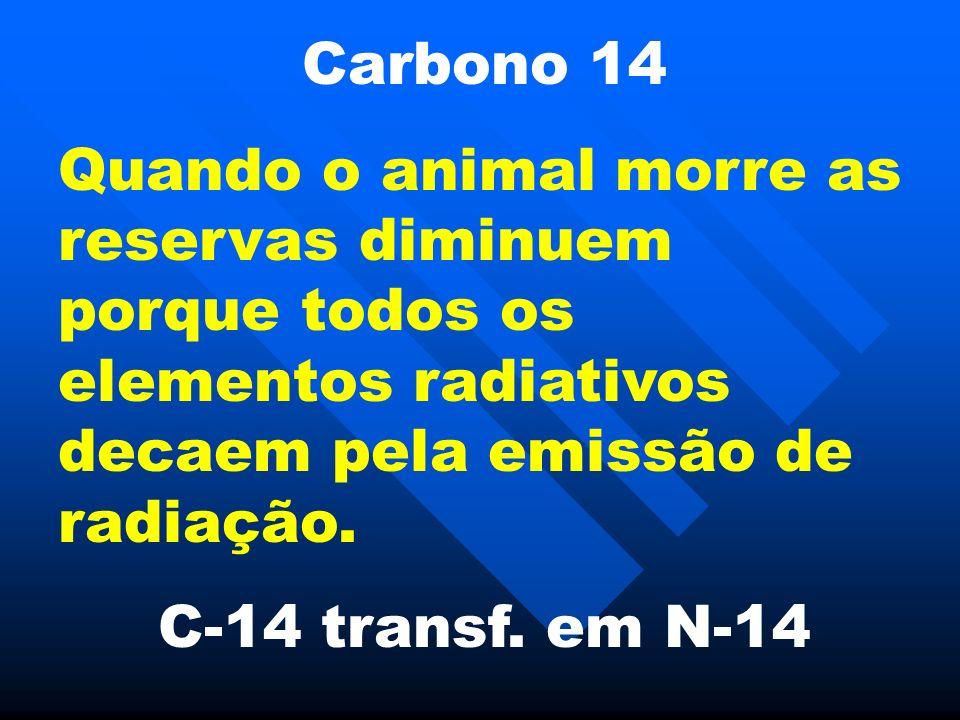 Carbono 14 Quando o animal morre as reservas diminuem porque todos os elementos radiativos decaem pela emissão de radiação. C-14 transf. em N-14