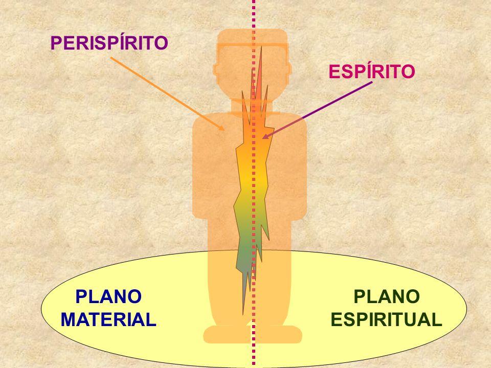 Plano Espiritual Portanto, para que o aprendizado do processo evolutivo ocorra, é necessário que o plano espiritual ofereça as condições para tal, ou