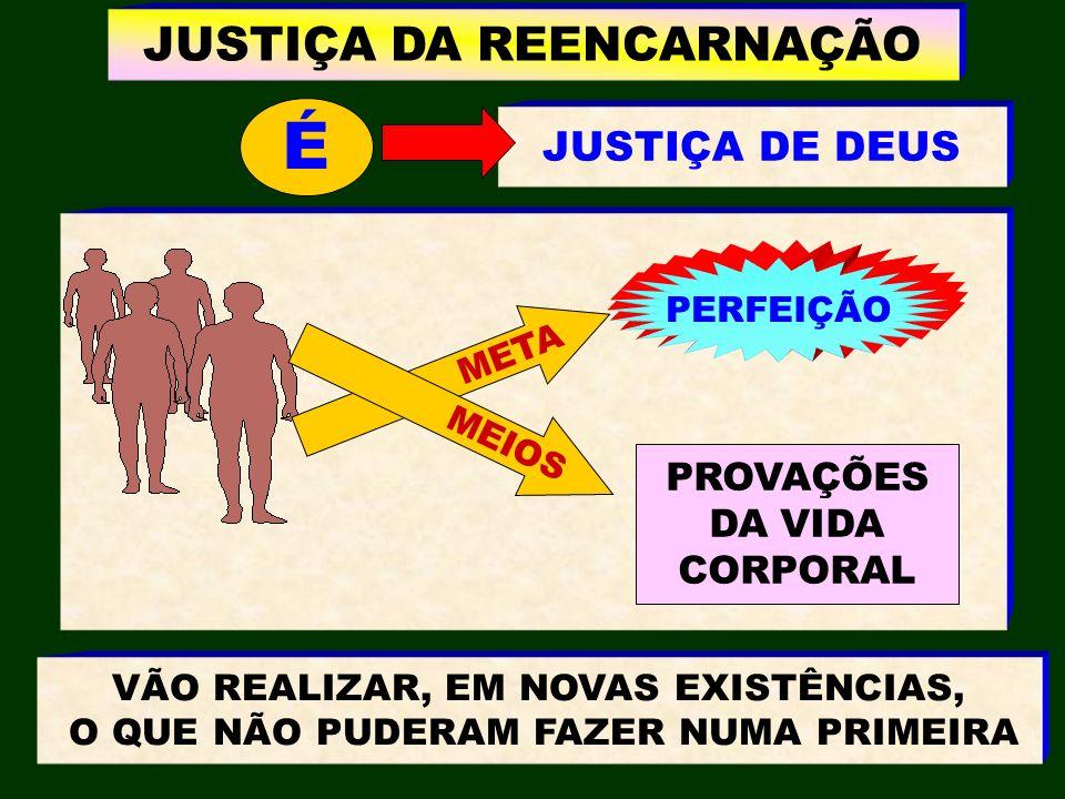 JUSTIÇA DE DEUS JUSTIÇA DA REENCARNAÇÃO META MEIOS PERFEIÇÃO PROVAÇÕES DA VIDA CORPORAL VÃO REALIZAR, EM NOVAS EXISTÊNCIAS, O QUE NÃO PUDERAM FAZER NU