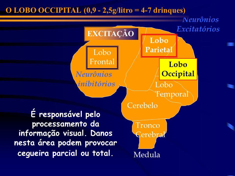 Lobo Frontal Cerebelo Lobo Parietal Lobo Occipital Lobo Temporal Neurônios inibitórios Neurônios Excitatórios O LOBO PARIETAL (0,9 - 2,5g/litro = 4-7 drinques) Tronco Cerebral EXCITAÇÃO Medula É responsável pela sensação de dor, tacto, paladar, temperatura e pressão.