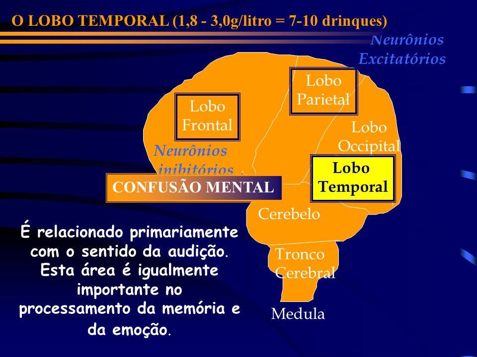 Lobo Frontal Cerebelo Lobo Parietal Lobo Occipital Lobo Temporal Neurônios inibitórios Neurônios Excitatórios O LOBO OCCIPITAL (0,9 - 2,5g/litro = 4-7 drinques) Tronco Cerebral EXCITAÇÃO Medula É responsável pelo processamento da informação visual.