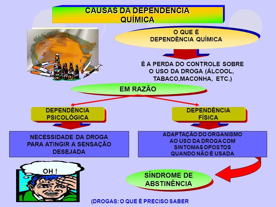 OBJETIVO DO CURSO FORMAR MULTIPLICADORES PERFIL IDEAL PARA TAREFEIROS DE CASAS ESPÍRITAS QUE TENHAM INTERESSE E SE RECICLAR E ENTENDER MELHOR O TRABALHO COM DEPENDENTES E CO-DEPENDENTES QUÍMICOS.