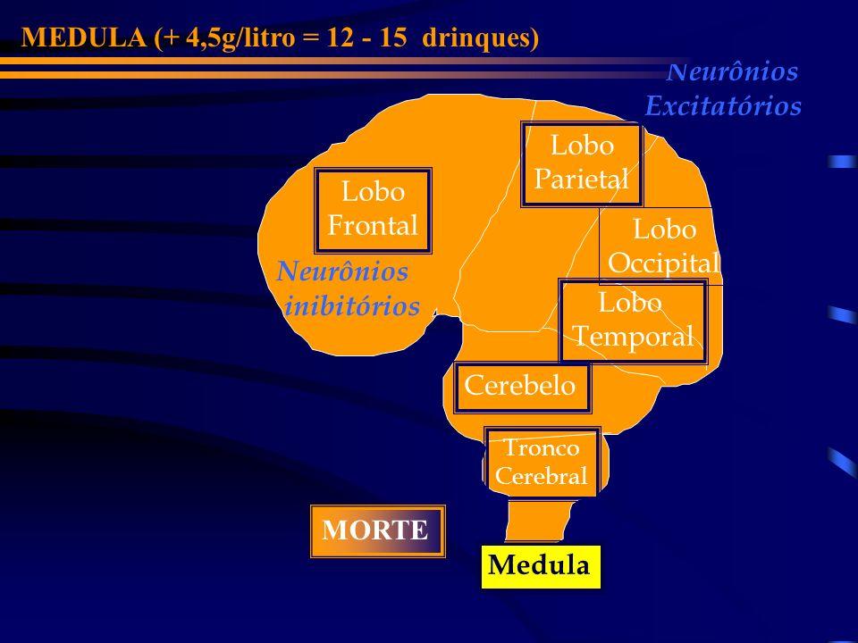 Lobo Frontal Cerebelo Lobo Parietal Lobo Occipital Medula Tronco Cerebral Lobo Temporal Neurônios inibitórios Neurônios Excitatórios O SIST.