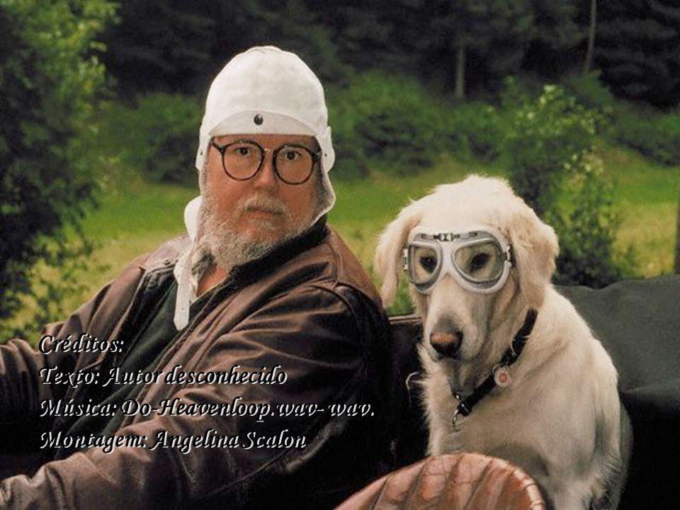 Que bom seria se todos os humanos pudessem ver a humanidade perfeita de um cão! Que bom seria se todos os humanos pudessem ver a humanidade perfeita d